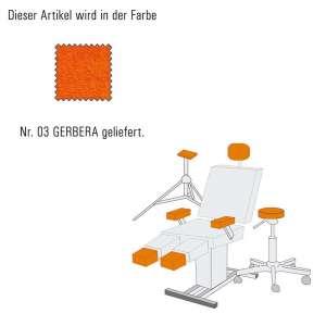 Hockerbezug_mini-gerbera